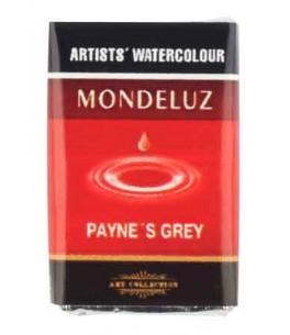 Aquarelverf-Payne's Grey